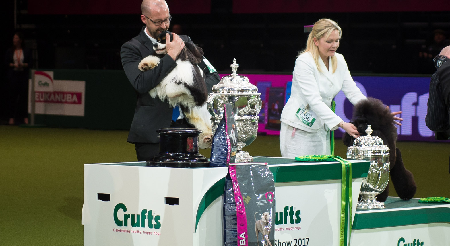 crufts-arenas.jpg
